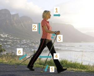 Technique de marche avec bâton, marche nordique